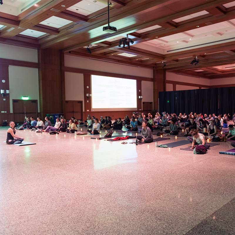 Large group of students meditating
