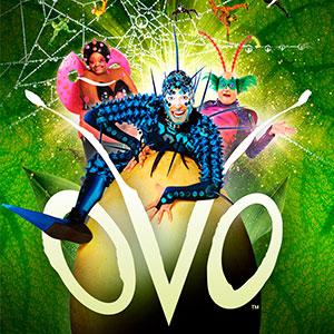 Cirque du Soleil: OVO Photo
